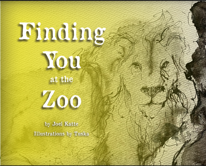 Finding you at the Zoo book cover